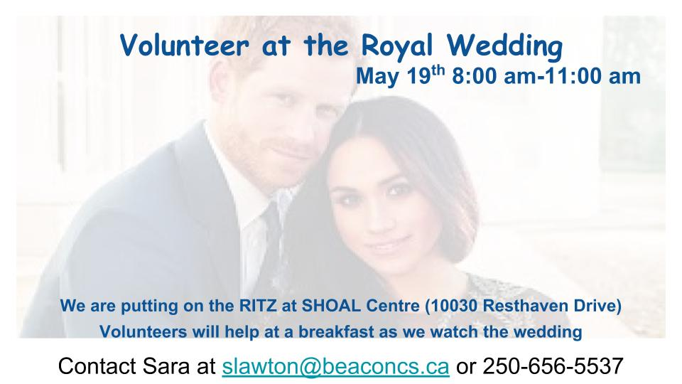 Volunteer at the Royal Wedding